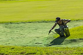Green Sand Trap