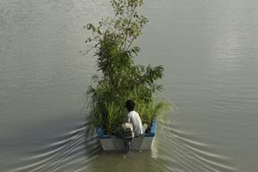 Boat tree